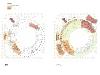 D:AngelClasesArq 2Proyectos 3-4Entrega Finalpanelesplanosplantas_01 2011-06-18-02 (1)